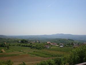 kmetija-bajuk-pogled2